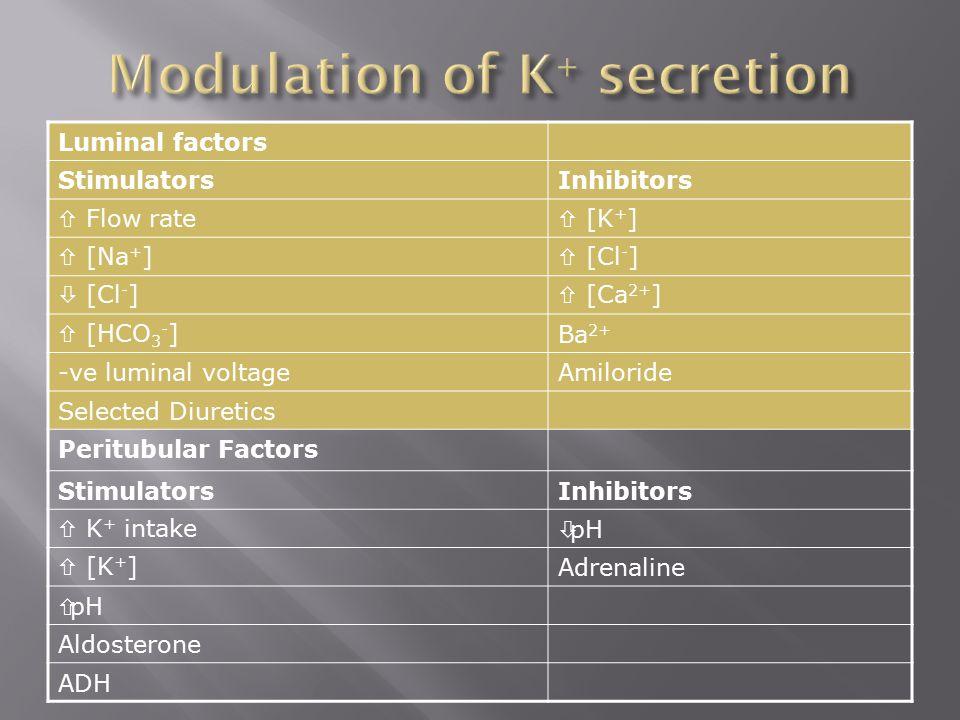 Luminal factors StimulatorsInhibitors  Flow rate  [K + ]  [Na + ]  [Cl - ]  [Cl - ]  [Ca 2+ ]  [HCO 3 - ]Ba 2+ -ve luminal voltageAmiloride Sel