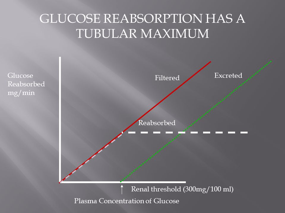 GLUCOSE REABSORPTION HAS A TUBULAR MAXIMUM Renal threshold (300mg/100 ml) Plasma Concentration of Glucose Glucose Reabsorbed mg/min Filtered Excreted
