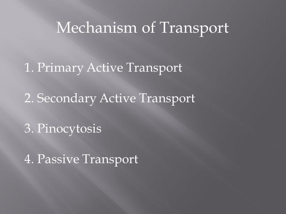 Mechanism of Transport 1. Primary Active Transport 2. Secondary Active Transport 3. Pinocytosis 4. Passive Transport