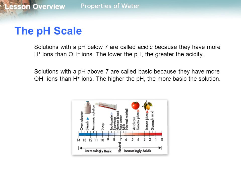 Lesson Overview Lesson Overview Properties of Water The pH Scale Solutions with a pH below 7 are called acidic because they have more H + ions than OH
