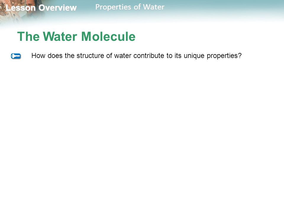 Lesson Overview Lesson Overview Properties of Water The Water Molecule How does the structure of water contribute to its unique properties?