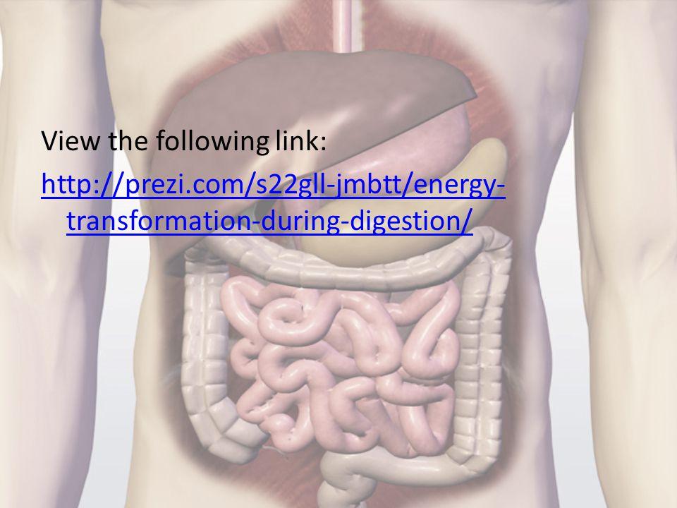 View the following link: http://prezi.com/s22gll-jmbtt/energy- transformation-during-digestion/