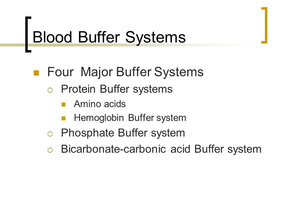 Blood Buffer Systems Four Major Buffer Systems  Protein Buffer systems Amino acids Hemoglobin Buffer system  Phosphate Buffer system  Bicarbonate-carbonic acid Buffer system