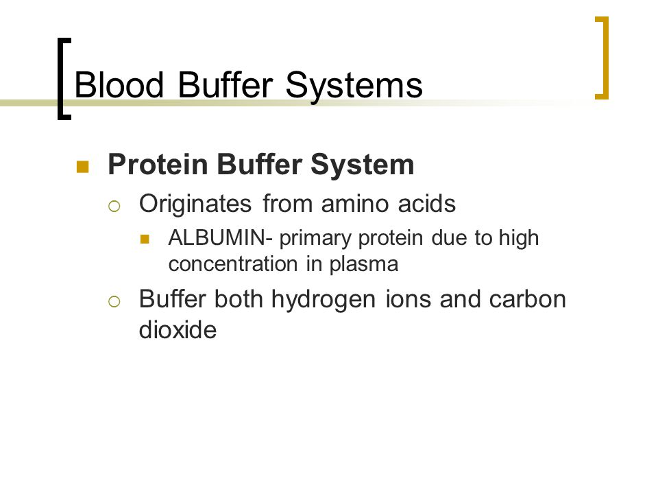 Blood Buffer Systems Protein Buffer System  Originates from amino acids ALBUMIN- primary protein due to high concentration in plasma  Buffer both hydrogen ions and carbon dioxide