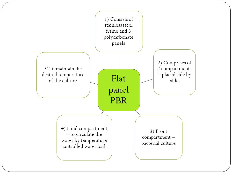 Flat panel PBR 1) Consists of stainless steel frame and 3 polycarbonate panels 2) Comprises of 2 compartments – placed side by side 3) Front compartment – bacterial culture 4) Hind compartment – to circulate the water by temperature controlled water bath 5) To maintain the desired temperature of the culture