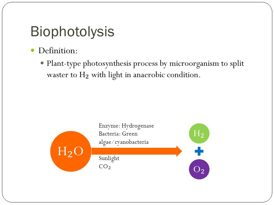 Biophotolysis Definition: Plant-type photosynthesis process by microorganism to split waster to H ₂ with light in anaerobic condition. H₂H₂ O₂O₂ H₂OH₂