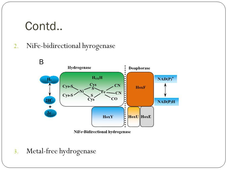 Contd.. 2. NiFe-bidirectional hyrogenase 3. Metal-free hydrogenase