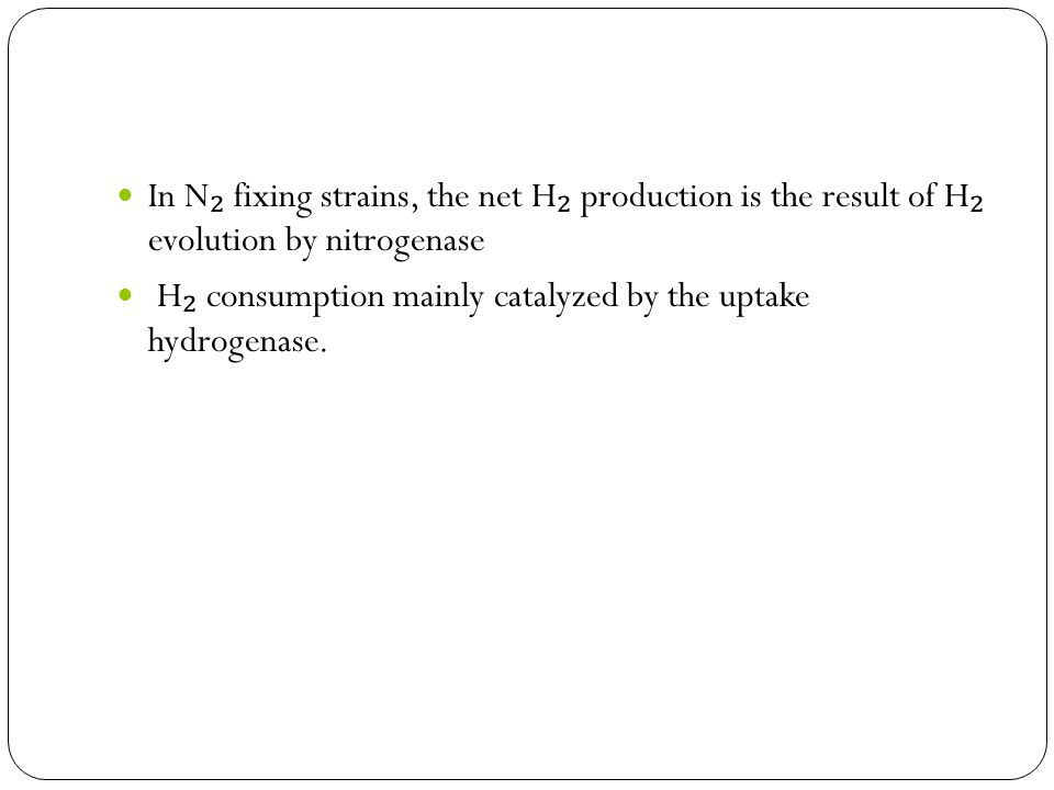 In N ₂ fixing strains, the net H ₂ production is the result of H ₂ evolution by nitrogenase H ₂ consumption mainly catalyzed by the uptake hydrogenase.