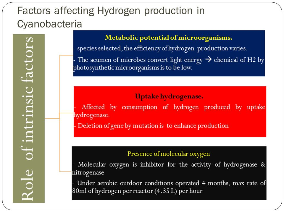 Factors affecting Hydrogen production in Cyanobacteria