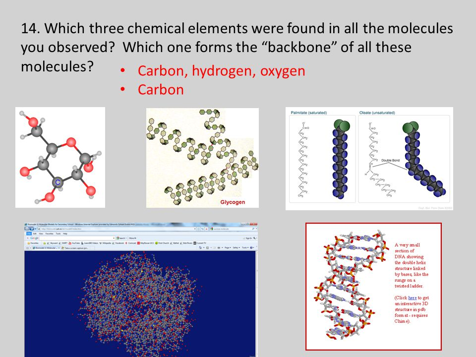 14.Which three chemical elements were found in all the molecules you observed.