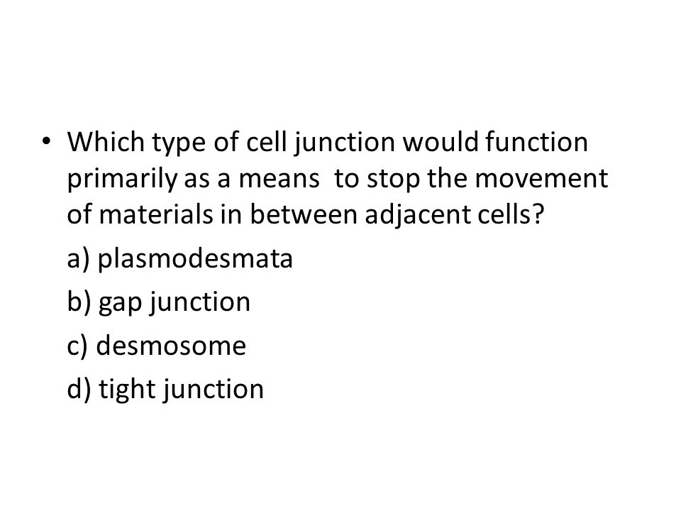 Which type of cell junction would function primarily as a means to stop the movement of materials in between adjacent cells.