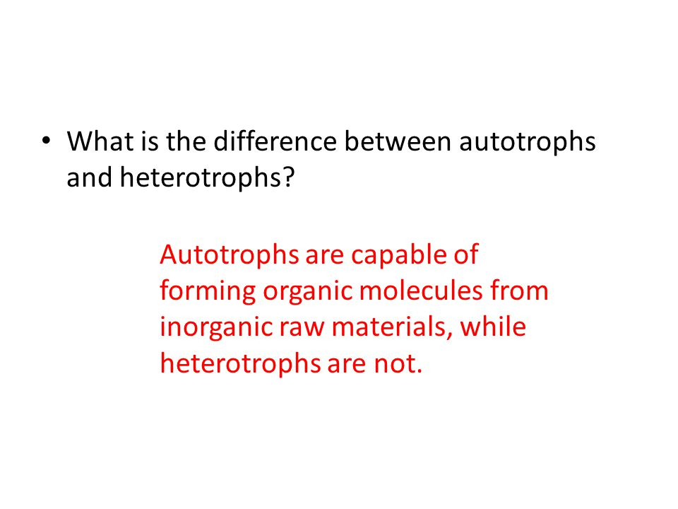 What is the difference between autotrophs and heterotrophs.