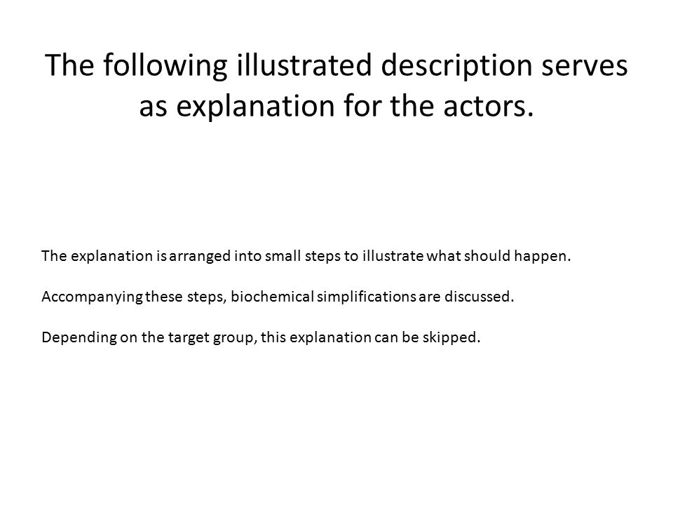 The following illustrated description serves as explanation for the actors.