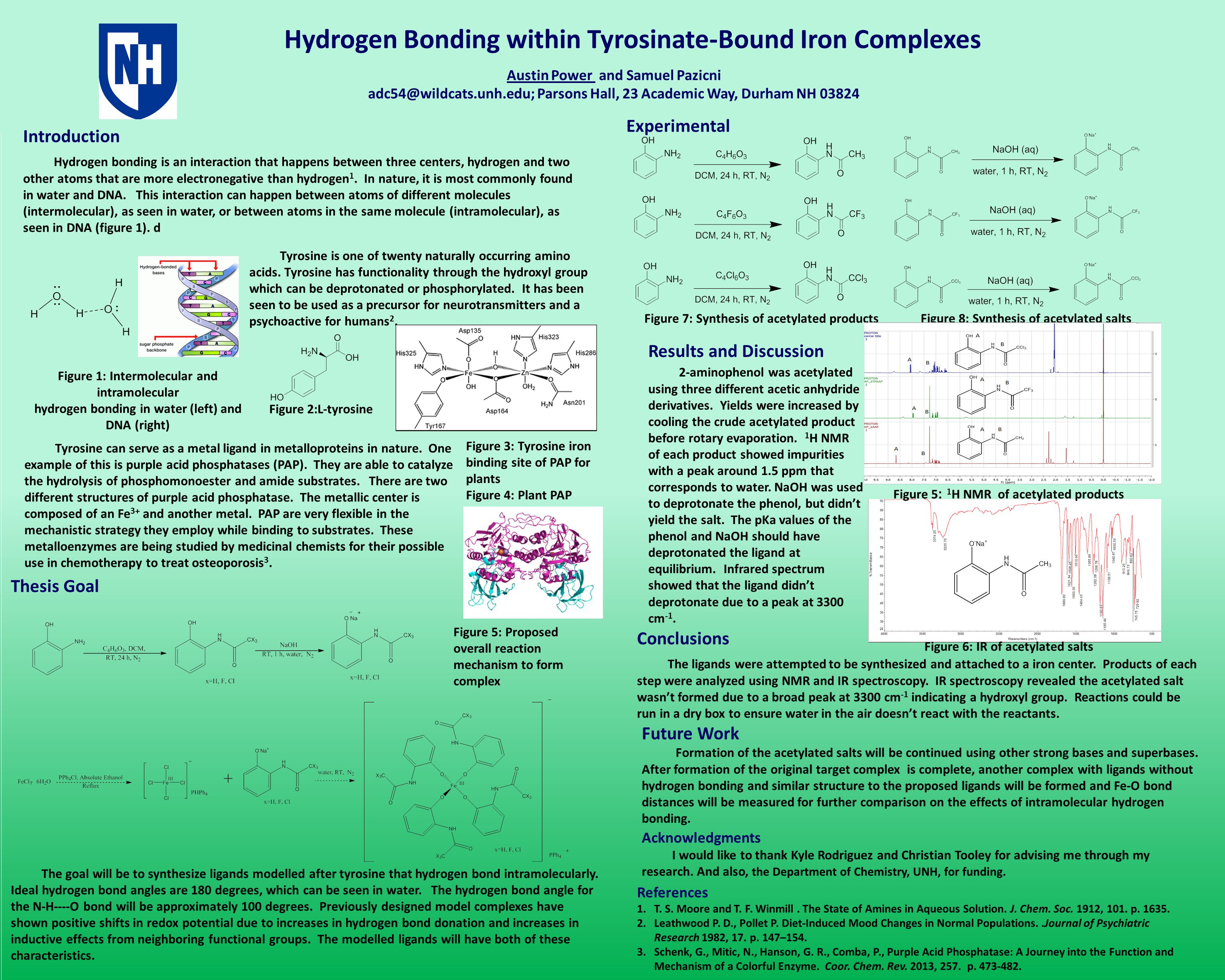 Hydrogen Bonding within Tyrosinate-Bound Iron Complexes Acknowledgments I would like to thank Kyle Rodriguez and Christian Tooley for advising me through my research.