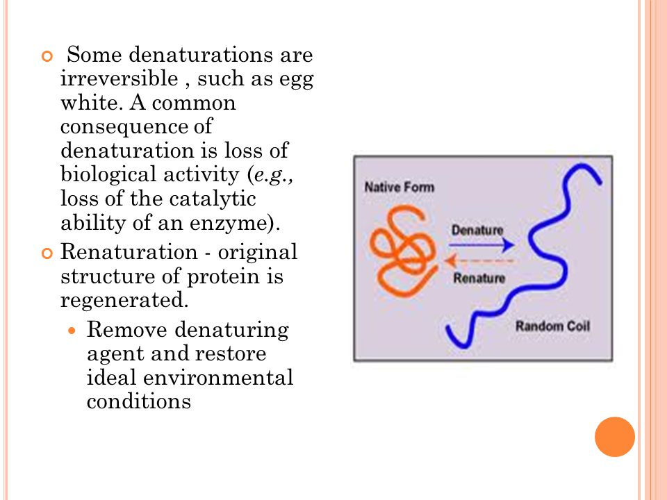Some denaturations are irreversible, such as egg white. A common consequence of denaturation is loss of biological activity ( e.g., loss of the cataly