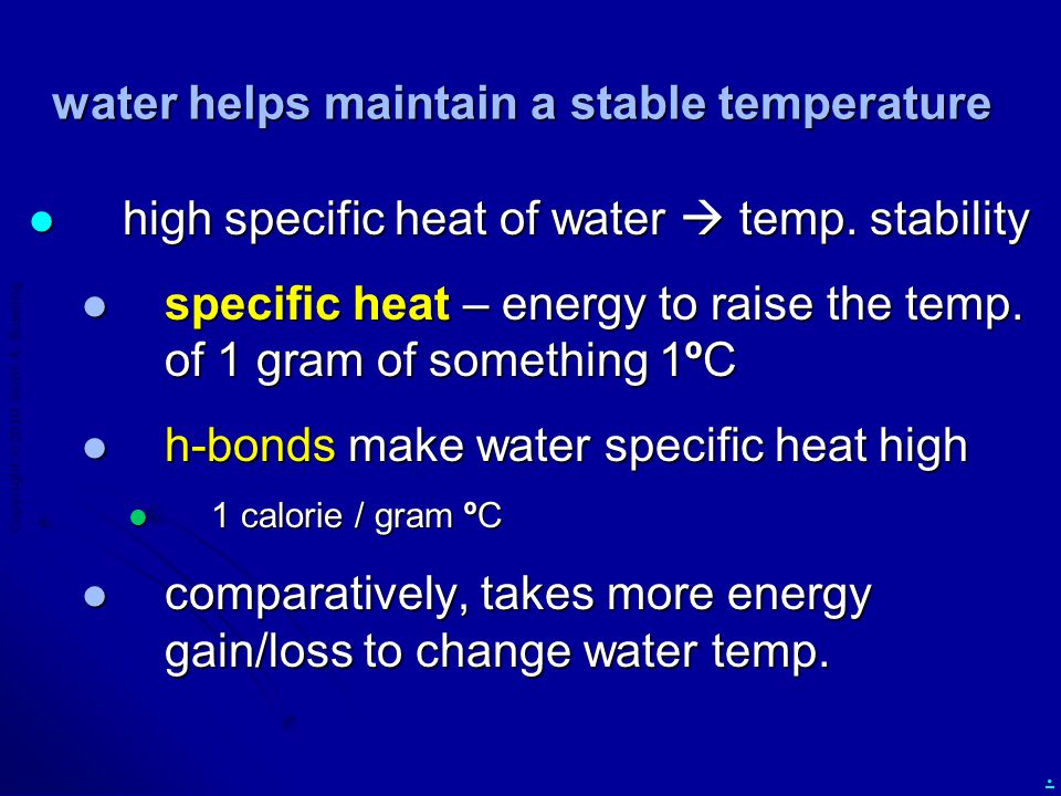 Copyright  2010 Scott A. Bowling. water helps maintain a stable temperature high specific heat of water  temp. stability high specific heat of water