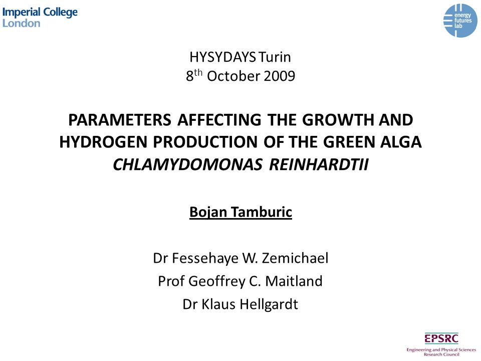 HYSYDAYS Turin 8 th October 2009 PARAMETERS AFFECTING THE GROWTH AND HYDROGEN PRODUCTION OF THE GREEN ALGA CHLAMYDOMONAS REINHARDTII Bojan Tamburic Dr Fessehaye W.