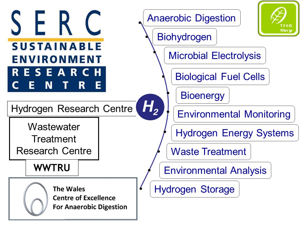 Transport biofuels using energy crops (UK context) Fuelproduction method consideredcrop considered Biodiesel extraction of plant oil followed by transesterification to biodiesel rape seed Bioethanol hydrolysis of sugars followed by fermentation and distillation wheat grain sugar beet (roots only) Biomethaneanaerobic digestion of carbohydratesrye grass sugar beet (whole crop) forage maize Biofuels, Production Methods, and Source Crops Considered Fuelcrop Gross energy produced (MJ/ha) Total energy losses (MJ/ha) Net energy balance (MJ/ha) Biodiesel rape seed50 12525 94024 185 Bioethanol wheat grain sugar beet (roots only) 67 50138 90828 593 131 2405397677264 Biomethanerye grass1141642099793167 sugar beet (whole crop) 17264043850128790 forage maize28854451533237011 Net Energy Associated with Biofuels from Energy Crops