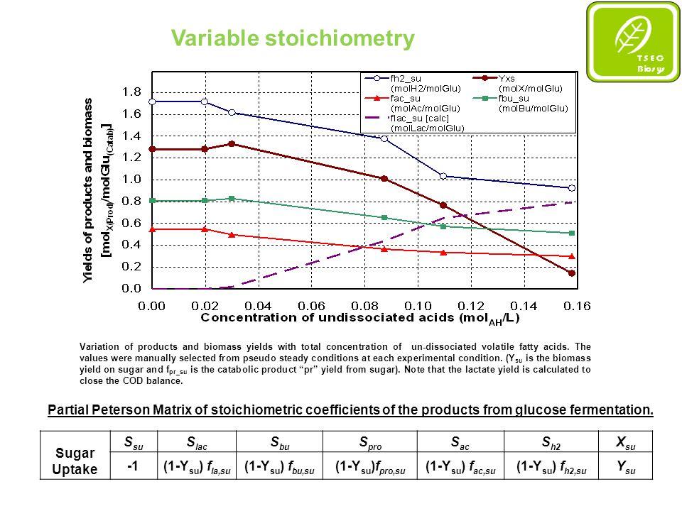 Simulation studies Experimental vs.