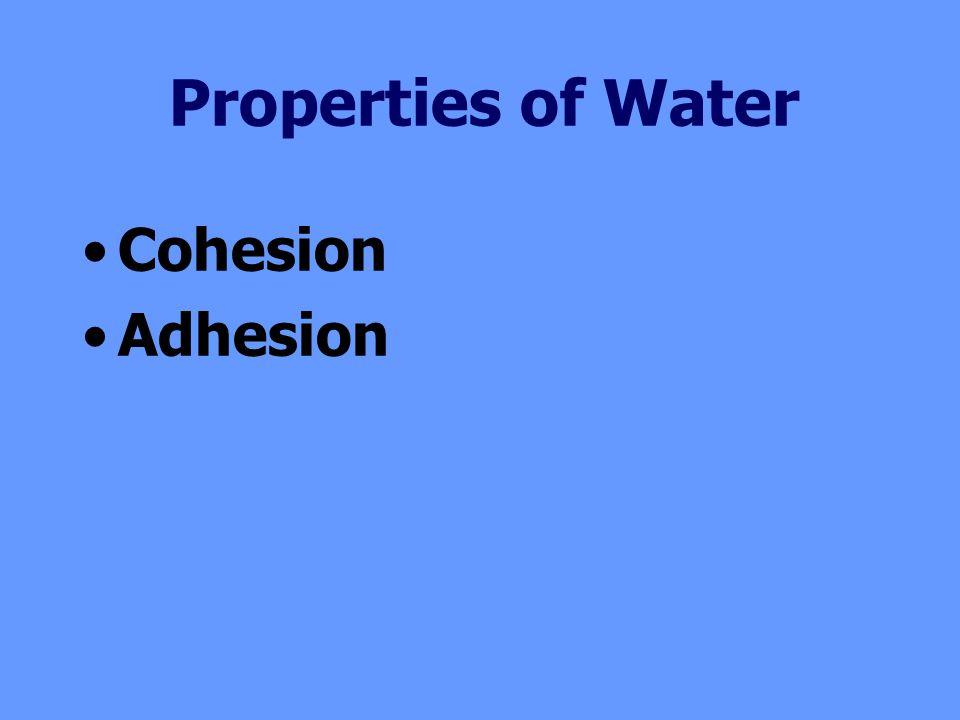 Cohesion Adhesion