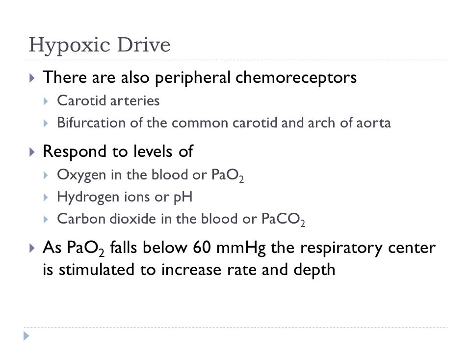 Hypoxic Drive  There are also peripheral chemoreceptors  Carotid arteries  Bifurcation of the common carotid and arch of aorta  Respond to levels of  Oxygen in the blood or PaO 2  Hydrogen ions or pH  Carbon dioxide in the blood or PaCO 2  As PaO 2 falls below 60 mmHg the respiratory center is stimulated to increase rate and depth