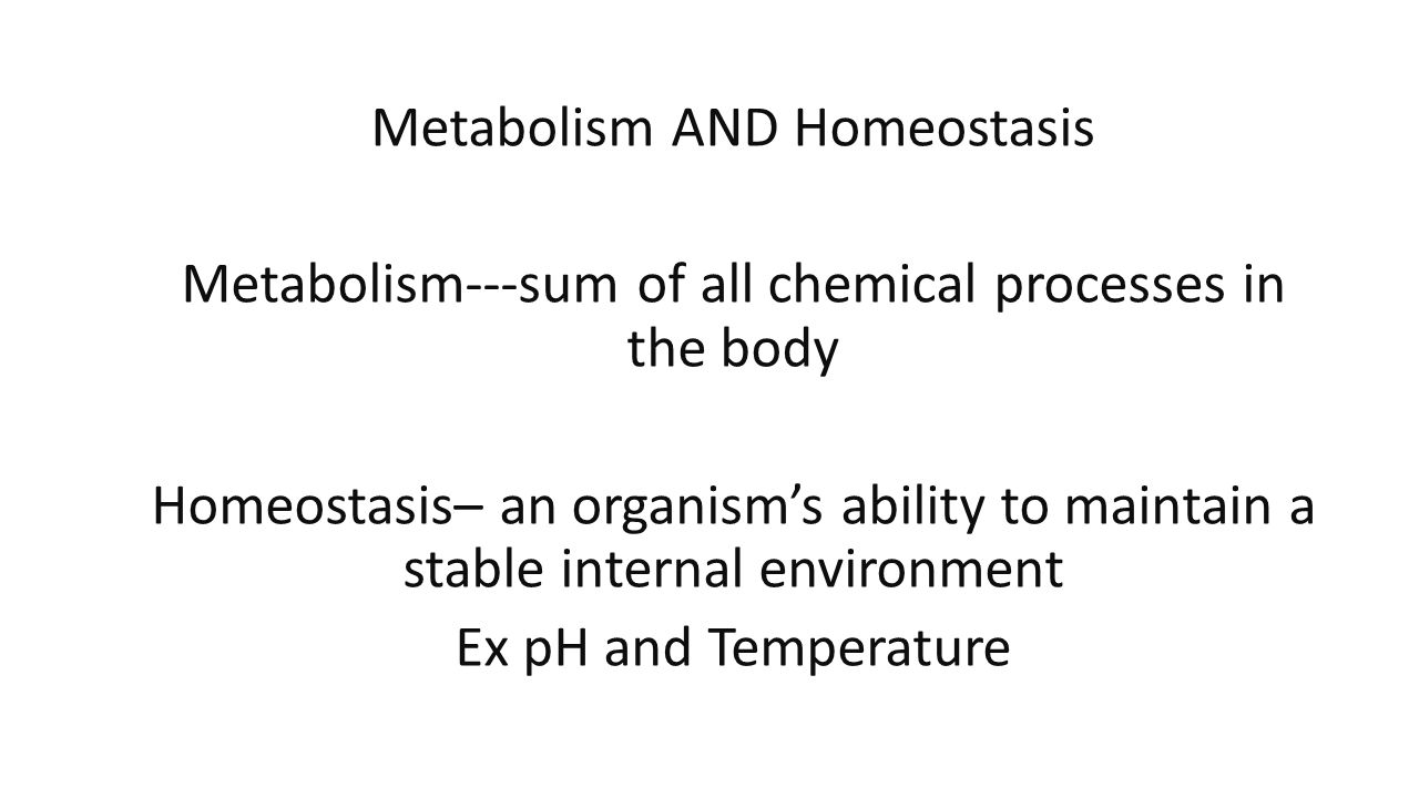 Metabolism AND Homeostasis Metabolism---sum of all chemical processes in the body Homeostasis– an organism's ability to maintain a stable internal environment Ex pH and Temperature