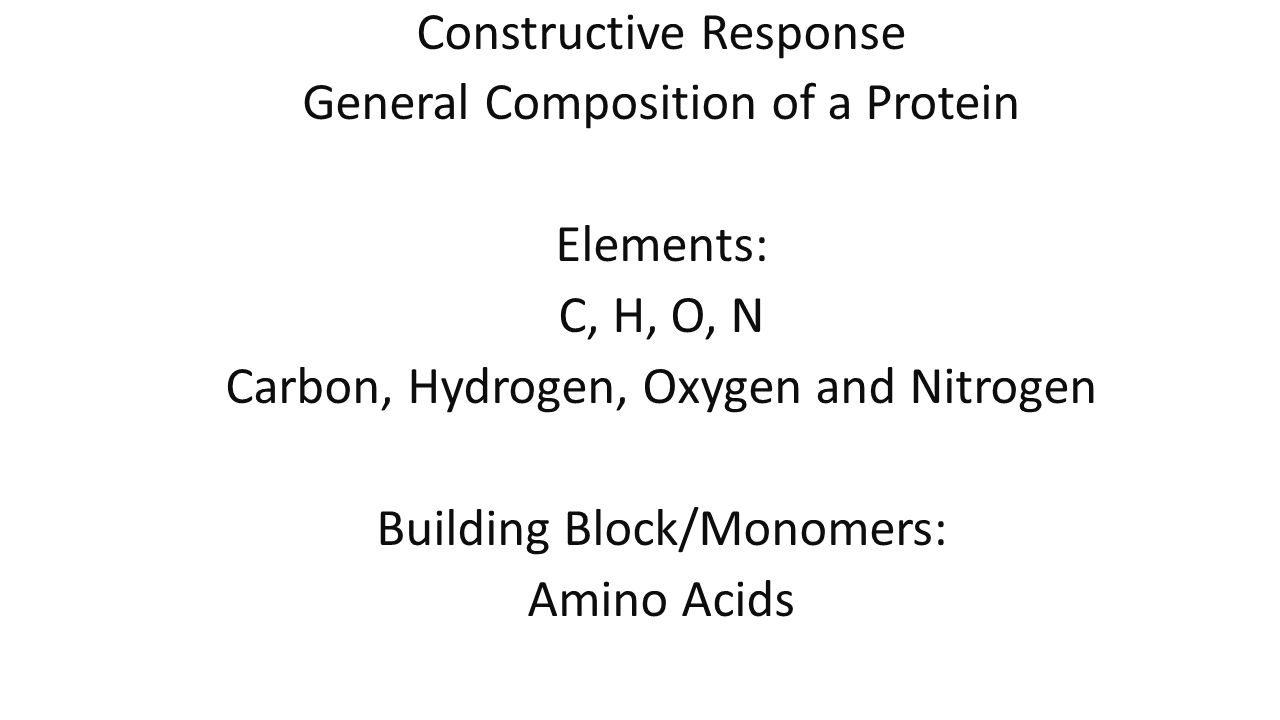 Constructive Response General Composition of a Protein Elements: C, H, O, N Carbon, Hydrogen, Oxygen and Nitrogen Building Block/Monomers: Amino Acids