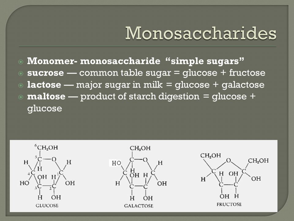  Monomer- monosaccharide simple sugars  sucrose — common table sugar = glucose + fructose  lactose — major sugar in milk = glucose + galactose  maltose — product of starch digestion = glucose + glucose