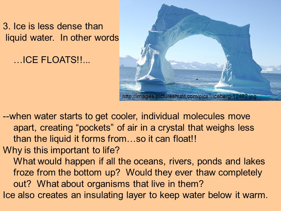 """3.Ice is less dense than liquid water. In other words …ICE FLOATS!!... --when water starts to get cooler, individual molecules move apart, creating """"p"""