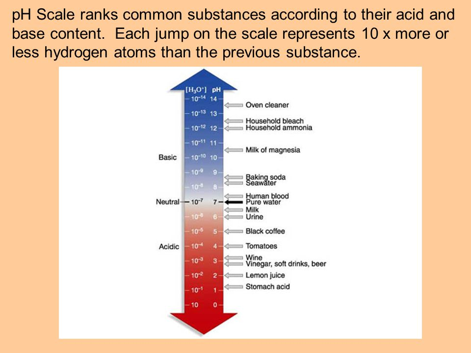 pH Scale ranks common substances according to their acid and base content.