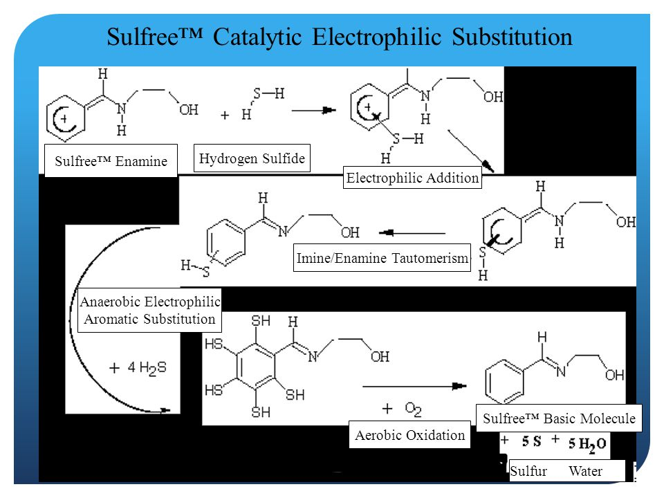 Electrophilic Addition Imine/Enamine Tautomerism Anaerobic Electrophilic Aromatic Substitution Aerobic Oxidation Hydrogen Sulfide Sulfree™ Enamine Sulfree™ Basic Molecule Sulfur Water Sulfree™ Catalytic Electrophilic Substitution