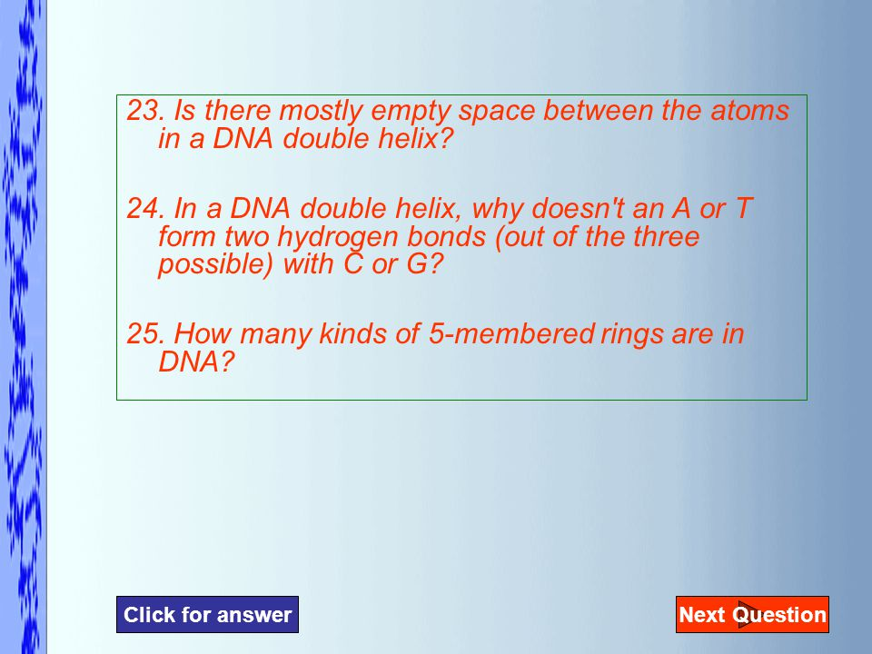 23. Is there mostly empty space between the atoms in a DNA double helix.