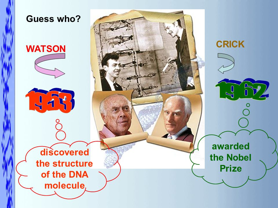 Guess who WATSON CRICK discovered the structure of the DNA molecule awarded the Nobel Prize