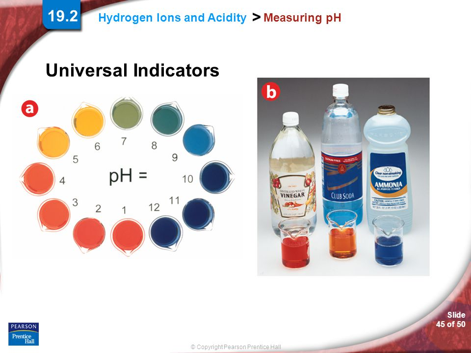 Slide 45 of 50 © Copyright Pearson Prentice Hall > Hydrogen Ions and Acidity Measuring pH Universal Indicators 19.2