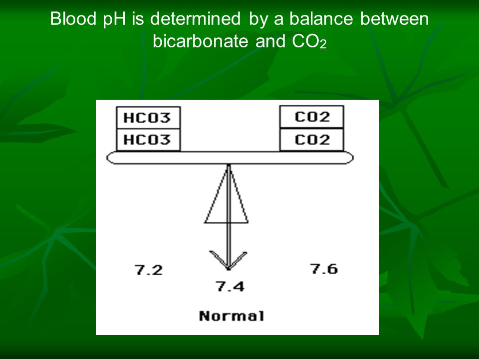 Blood pH is determined by a balance between bicarbonate and CO 2