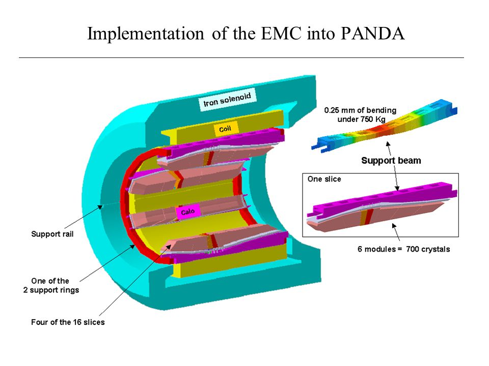 Implementation of the EMC into PANDA