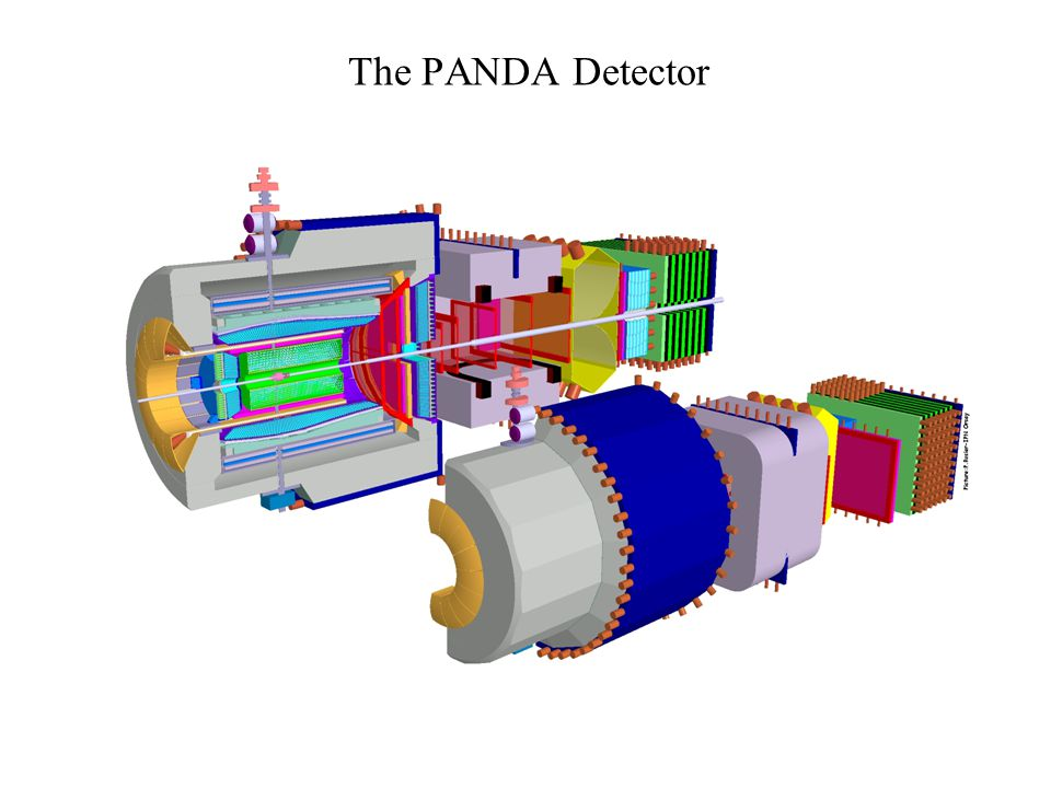 Layout of the detector (top view)