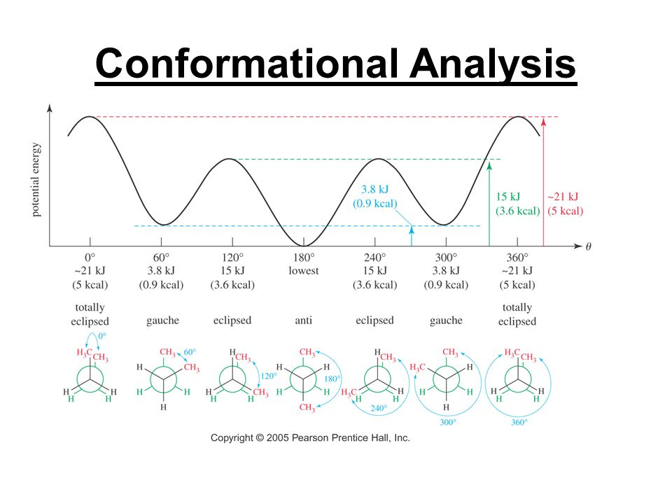 Conformational Analysis