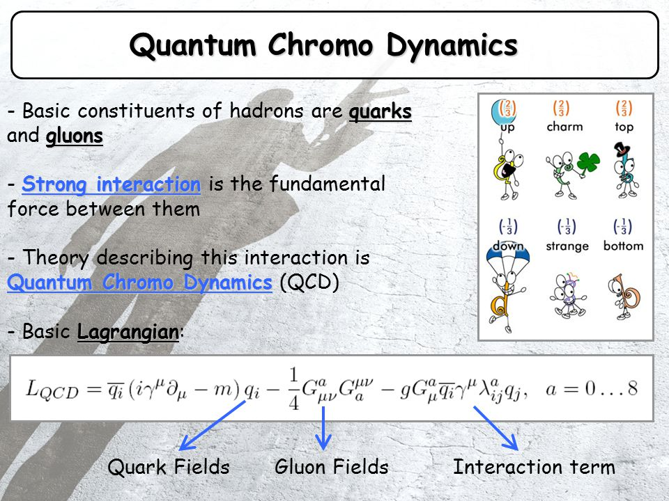 Symmetries of QCD QCD Lagrangian doesn't change under symmetry transformations: ChargeParityTime reversal - Discrete Charge, Parity and Time reversal symmetries Flavor symmetry: - Approximate Flavor symmetry: ( u -> d, d -> s, etc.) Chiral Symmetry: - Approximate Chiral Symmetry: limit of massless quarks These symmetries hold in the limit of massless quarks Invariance under separate unitary global transformations of left- and right-handed quark fields.
