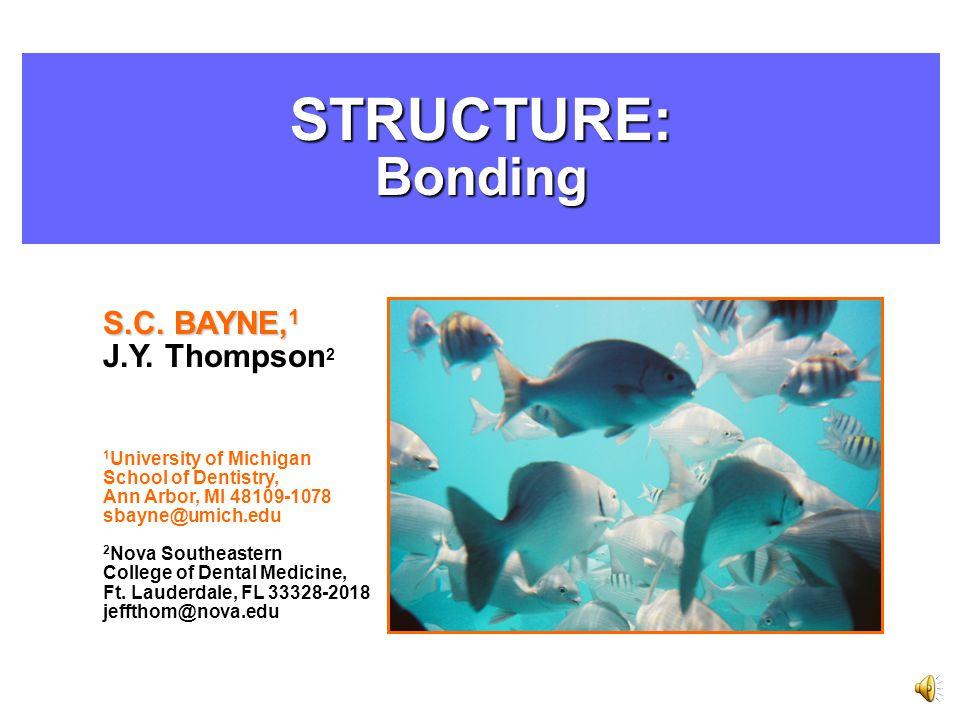 STRUCTURE:Bonding S.C. BAYNE, 1 J.Y.