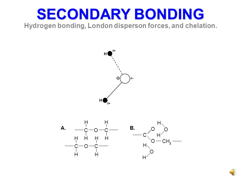 SECONDARY BONDING Hydrogen bonding, London disperson forces, and chelation.