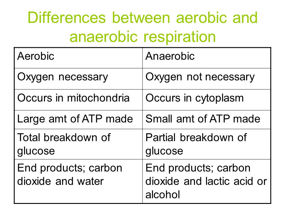 Differences between aerobic and anaerobic respiration AerobicAnaerobic Oxygen necessaryOxygen not necessary Occurs in mitochondriaOccurs in cytoplasm Large amt of ATP madeSmall amt of ATP made Total breakdown of glucose Partial breakdown of glucose End products; carbon dioxide and water End products; carbon dioxide and lactic acid or alcohol
