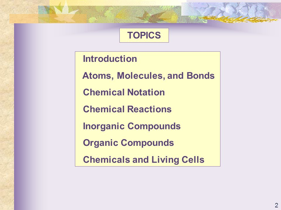 93 TOPICS Introduction Atoms, Molecules, and Bonds Chemical Notation Chemical Reactions Inorganic Compounds Organic Compounds Chemicals and Living Cells
