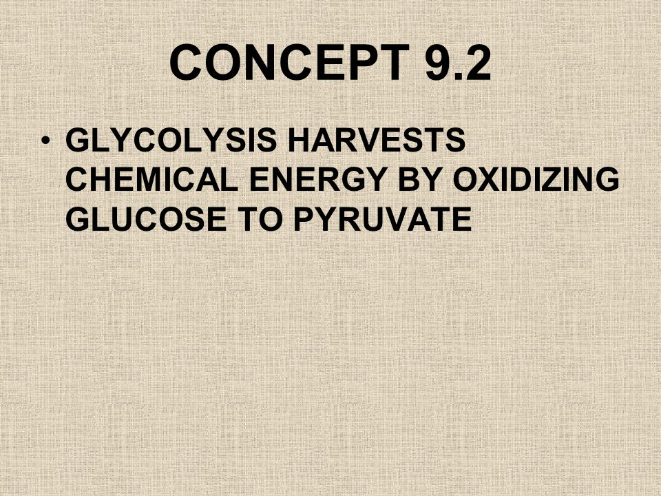 CONCEPT 9.2 GLYCOLYSIS HARVESTS CHEMICAL ENERGY BY OXIDIZING GLUCOSE TO PYRUVATE