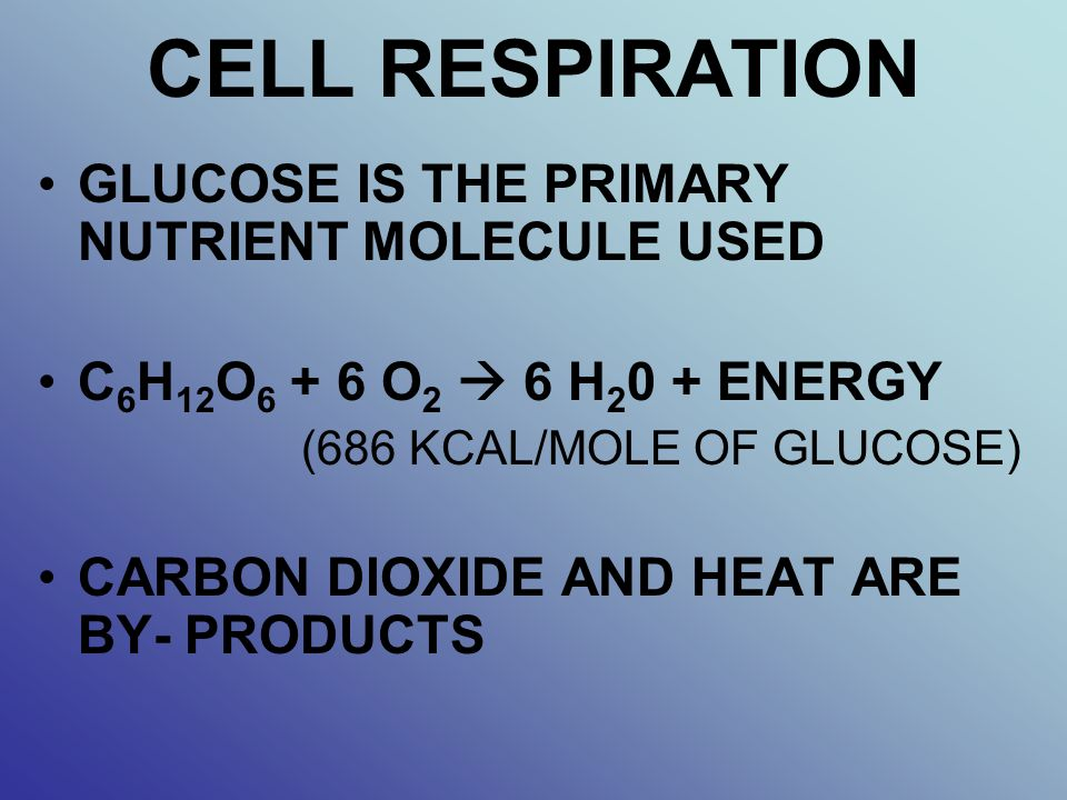 CELL RESPIRATION GLUCOSE IS THE PRIMARY NUTRIENT MOLECULE USED C 6 H 12 O 6 + 6 O 2  6 H 2 0 + ENERGY (686 KCAL/MOLE OF GLUCOSE) CARBON DIOXIDE AND H