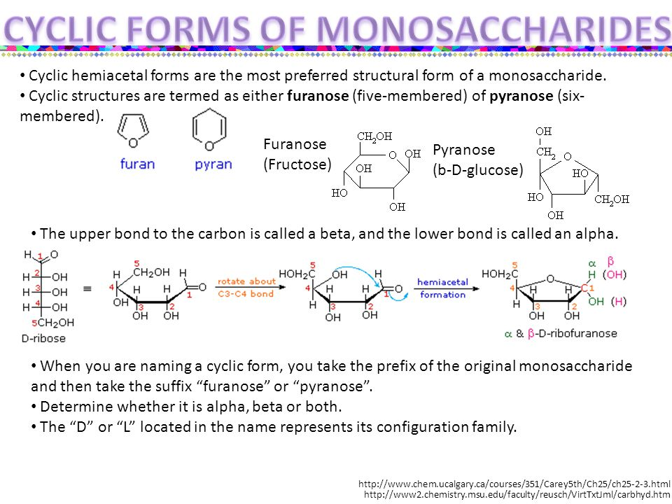 Cyclic hemiacetal forms are the most preferred structural form of a monosaccharide.
