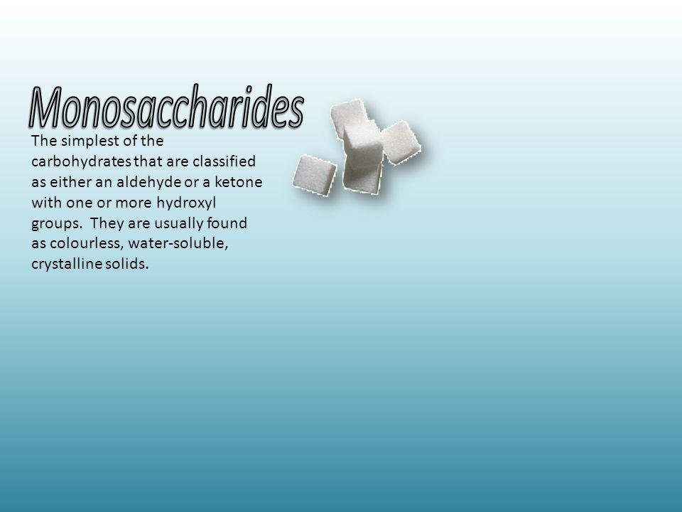 One sugar molecule (the basic molecular unit of all carbohydrates).