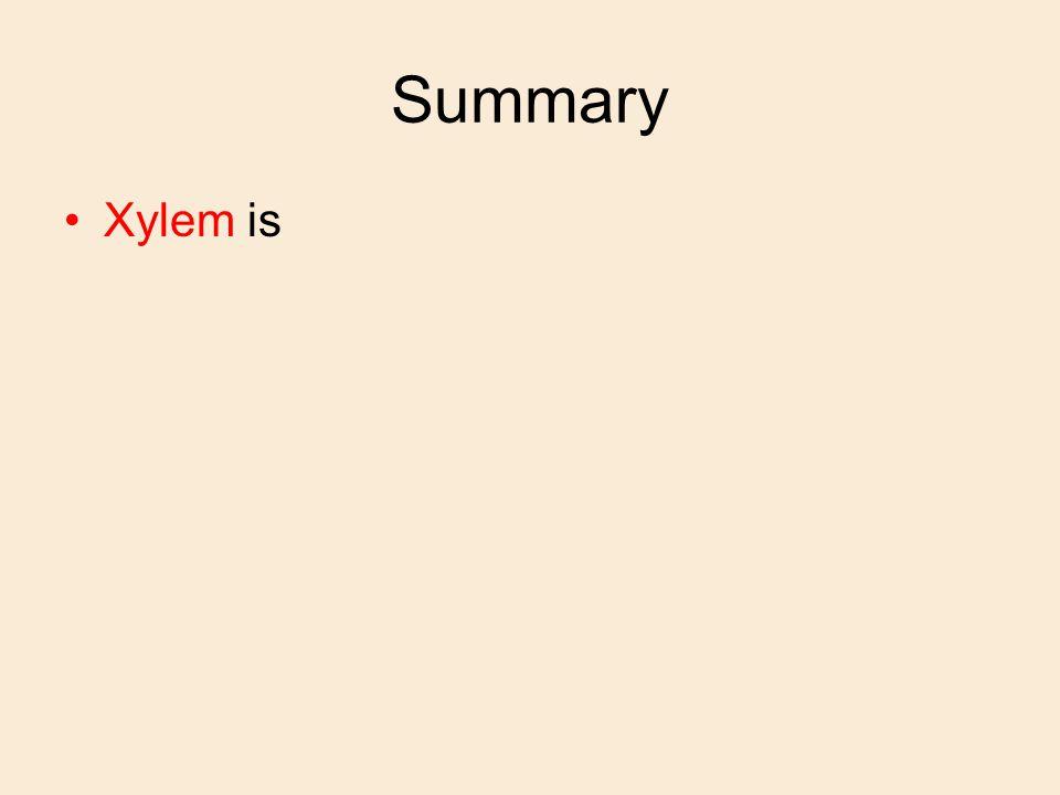 Summary Xylem is