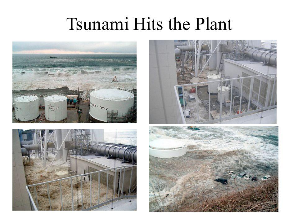 Tsunami Hits the Plant