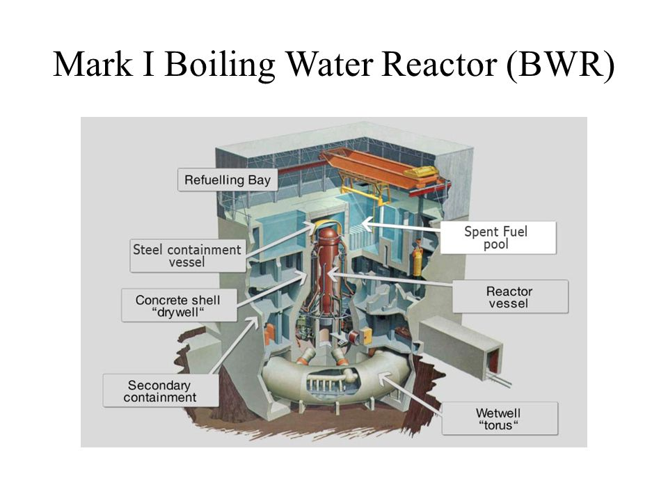 Mark I Boiling Water Reactor (BWR)